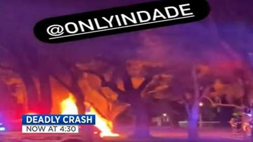 Two People Killed After Tesla Crashes Into A Tree And Becomes Quot Engulfed In Flames Quot In Florida